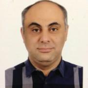 Reza Hamedani